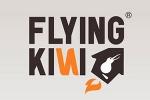 flying-kiwi.jpg